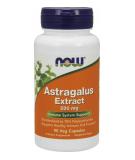Astragalus Extract 500mg 90 kaps.