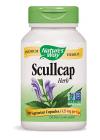 Scullcap Herb