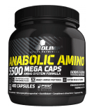 Anabolic Amino 5500 400 kaps.