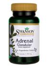 Adrenal Glandular
